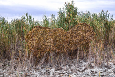 Reed Camouflage Net In Nature